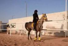 Photo of فتيات حائل ينافسن الشباب في ممارسة الفروسية وترويض الخيول