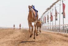 Photo of السعودية تتصدر نقاط جائزة سيف ولي العهد