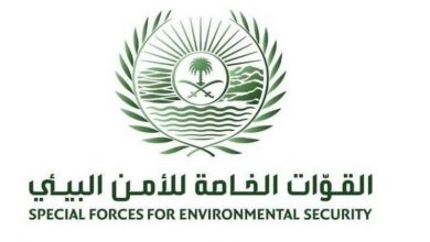 Photo of القوات الخاصة للأمن البيئي توقف (17) مخالفًا لنظام البيئة لارتكابهم مخالفات رعي