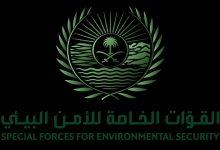 Photo of القوات الخاصة للأمن البيئي تضبط مخالفًا لنظام البيئة بحوزته 49.5 متر مكعب من الحطب المحلي بمدينة الرياض
