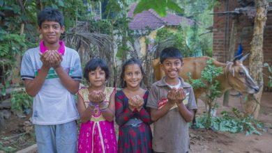 Photo of النجاة الخيرية: مشاريع تنموية للأسر المحتاجة في 15 دولة